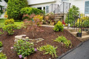 Landscape Construction - Front Yard